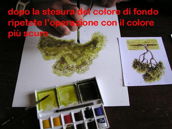 corso di disegno naturalistico 7° lezione