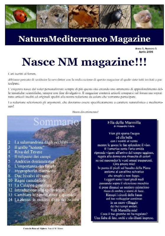 Nasce NM MAGAZINE N.1 APRILE