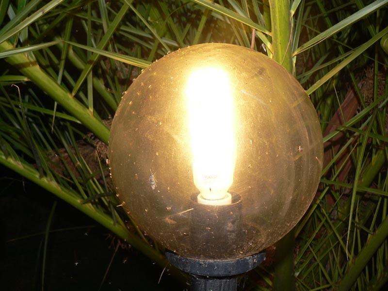 Fra le luci di un lampione una sera di metà autunno...