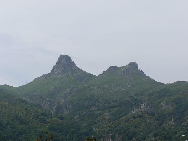 Marmorana (Ambigua) fuscolabiata    di Sicilia