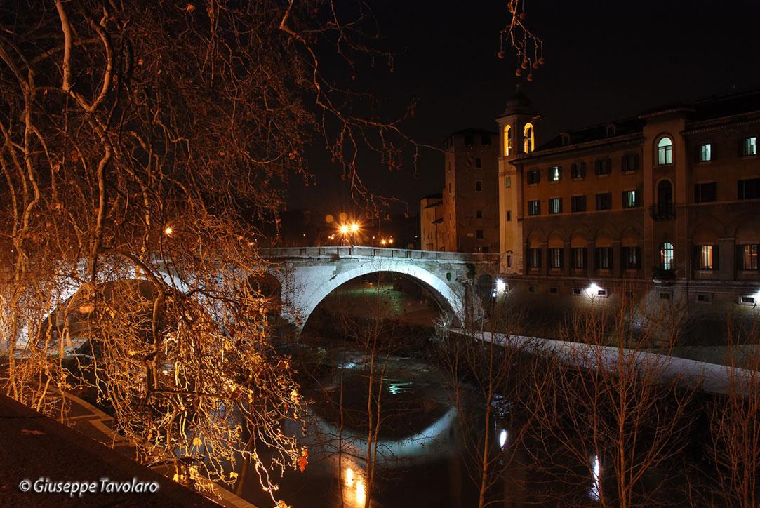 Immagini di roma di notte forum natura mediterraneo forum naturalistico - La finestra di fronte roma ...