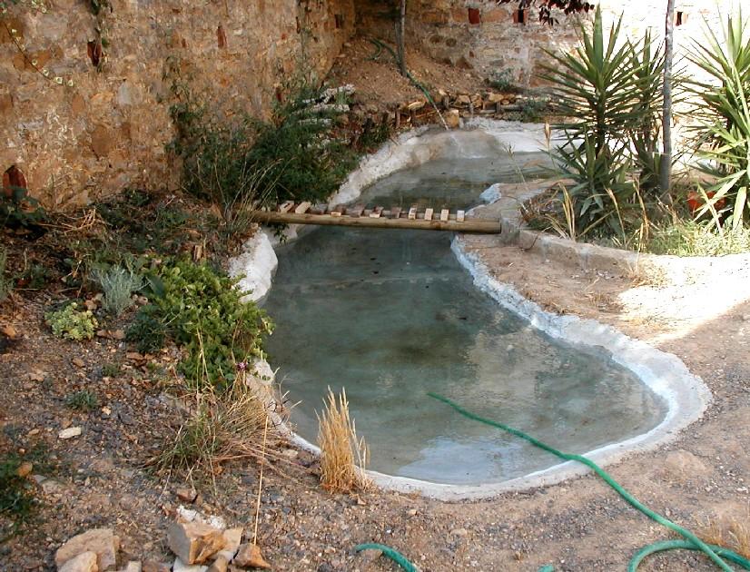 Il laghetto del centro di entomologia piombino li for Laghetto vasca