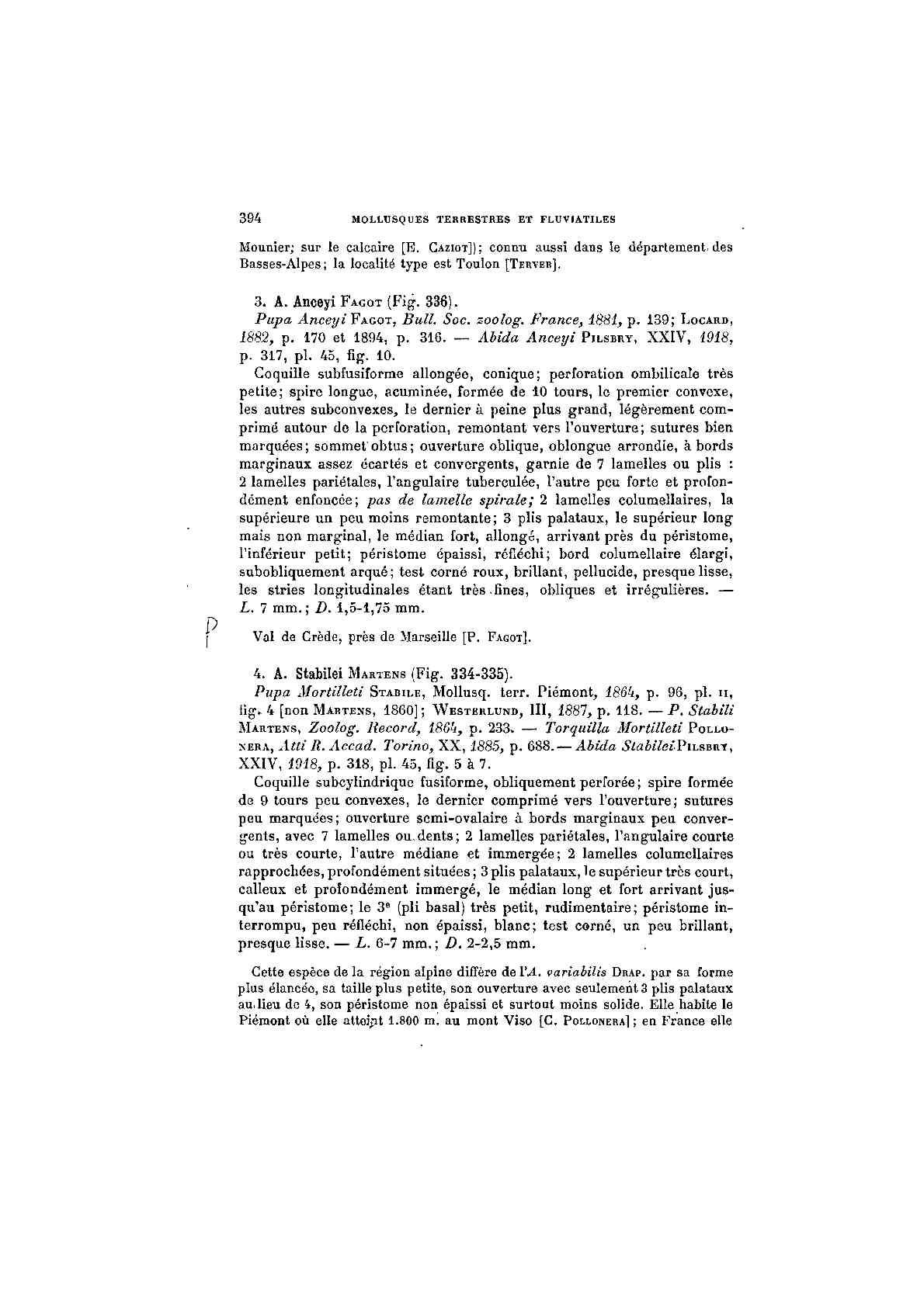 Granaria variabilis (Draparnaud, 1801)