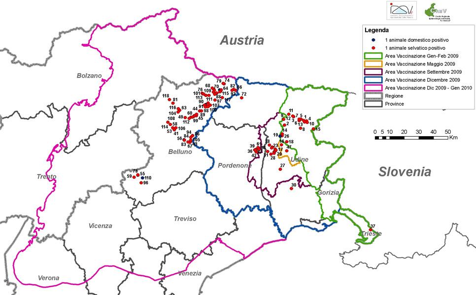 Aggiornamenti sulla diffusione della rabbia nel Nord-Est
