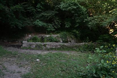 Fontanili del Lazio