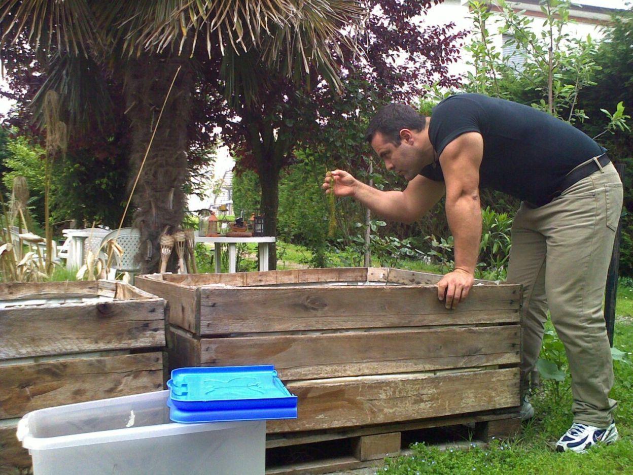 Laghetti artificiali per anfibi forum natura for Vasche pesci da giardino