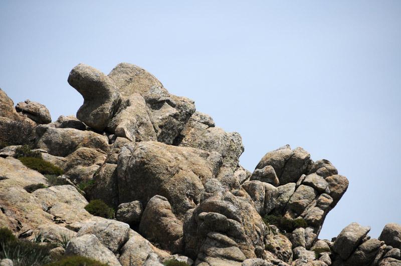 Monte Linas (Punta Cammedda)