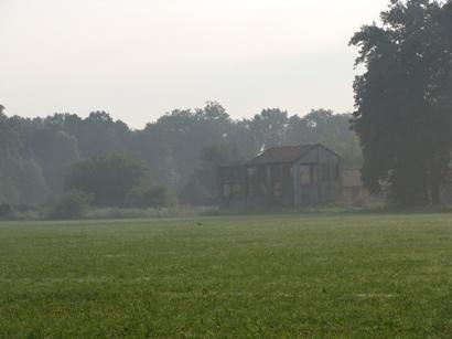Coccinelle del Parco di Monza
