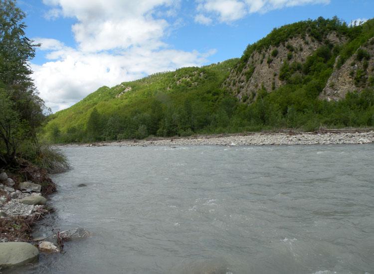 Sotto i sassi del fiume secchia larve di ephemeroptera e for Sassi di fiume