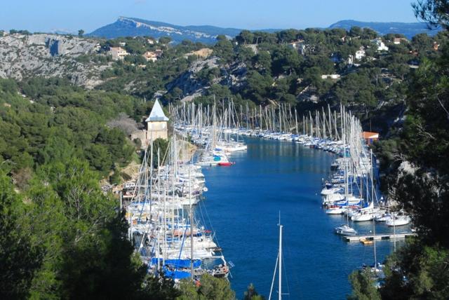 Abida polyodon Francia