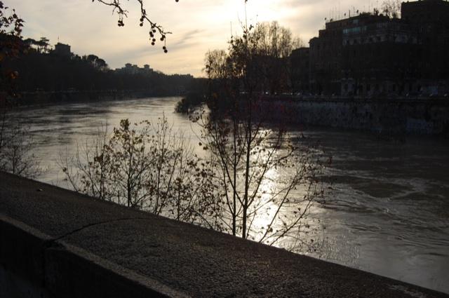 La piena del tevere forum natura mediterraneo forum naturalistico - Porta portese messaggi ...