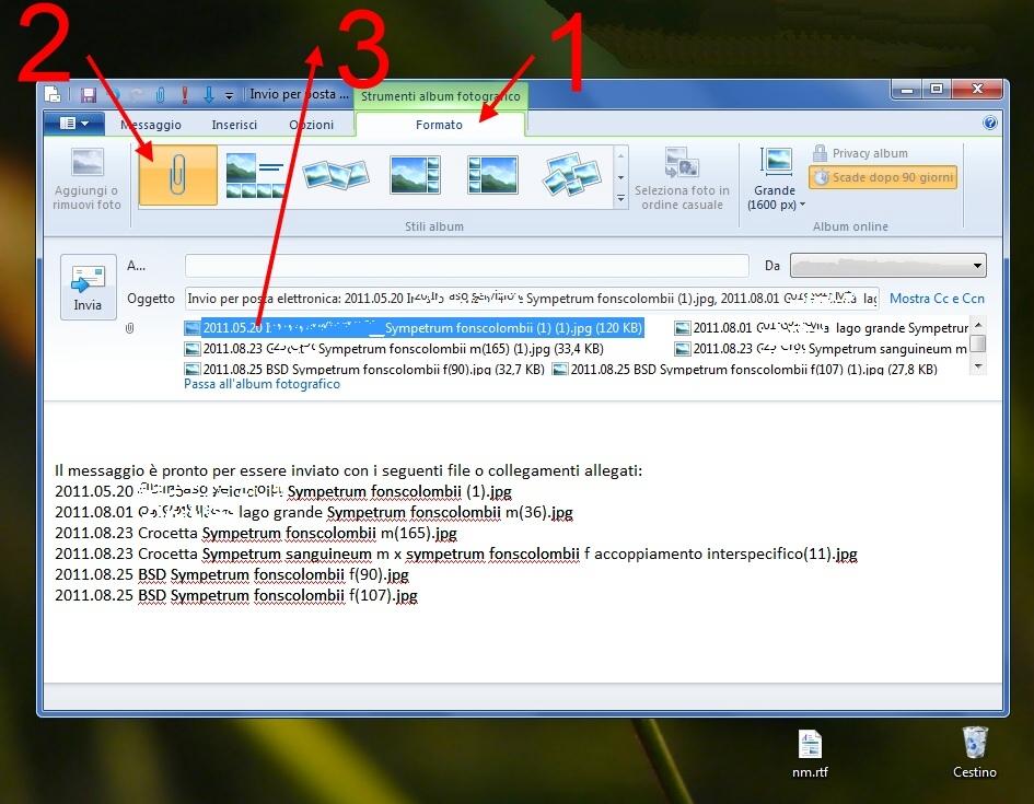 Come ridimensionare e comprimere le foto con solo Windows
