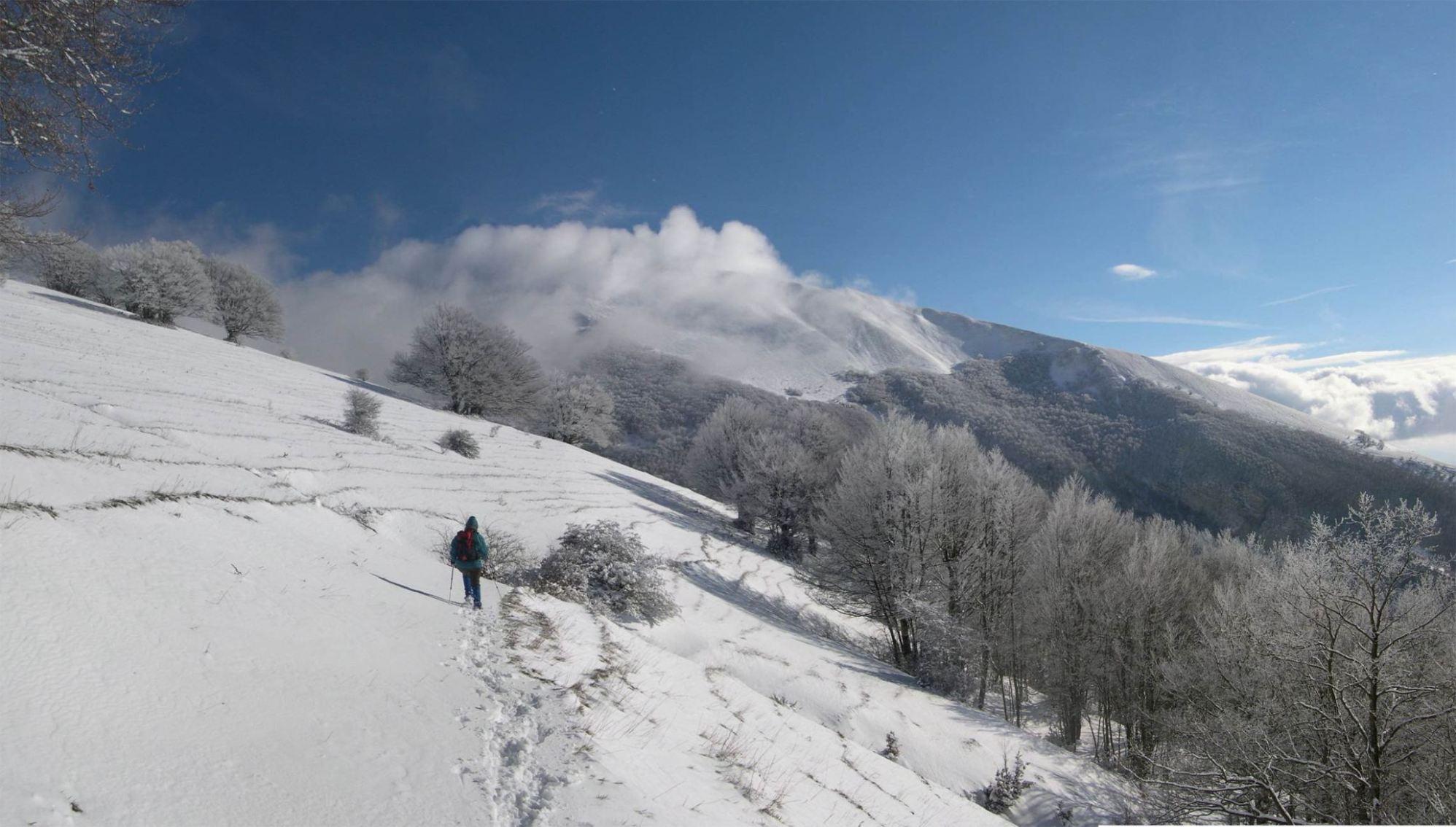 per i sentieri del Monte Catria