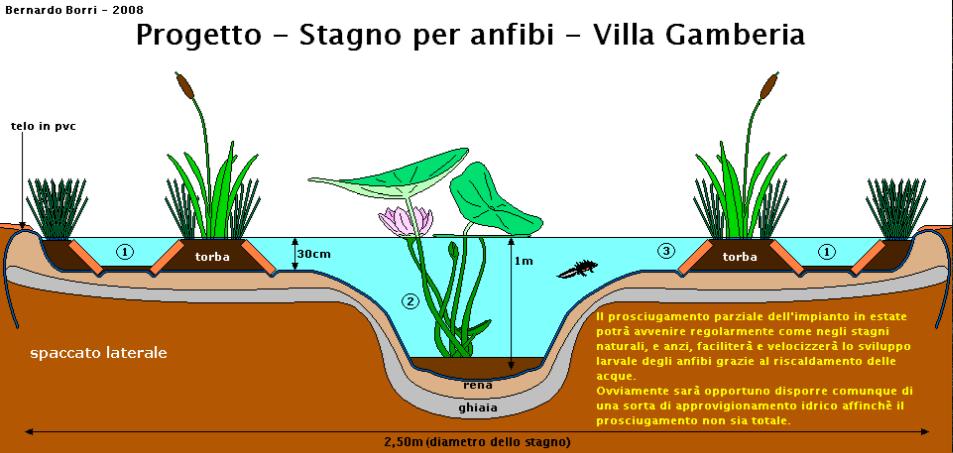 Vorrei fare uno stagno ma forum natura mediterraneo for Stagno artificiale