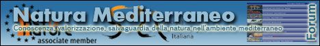 Sito Entomologi italiani