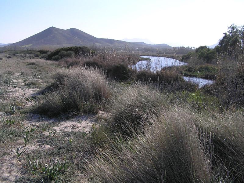 Le dune di Posada (NU) - Sardegna