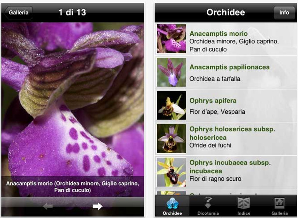 Guida orchidee Iphone, Ipod e Ipad