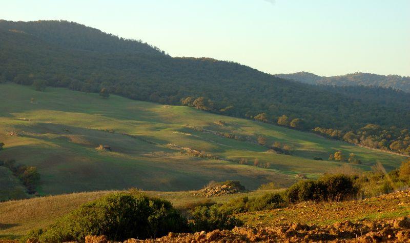 Incontro di Natura Mediterraneo 5 (->12) novembre 2011