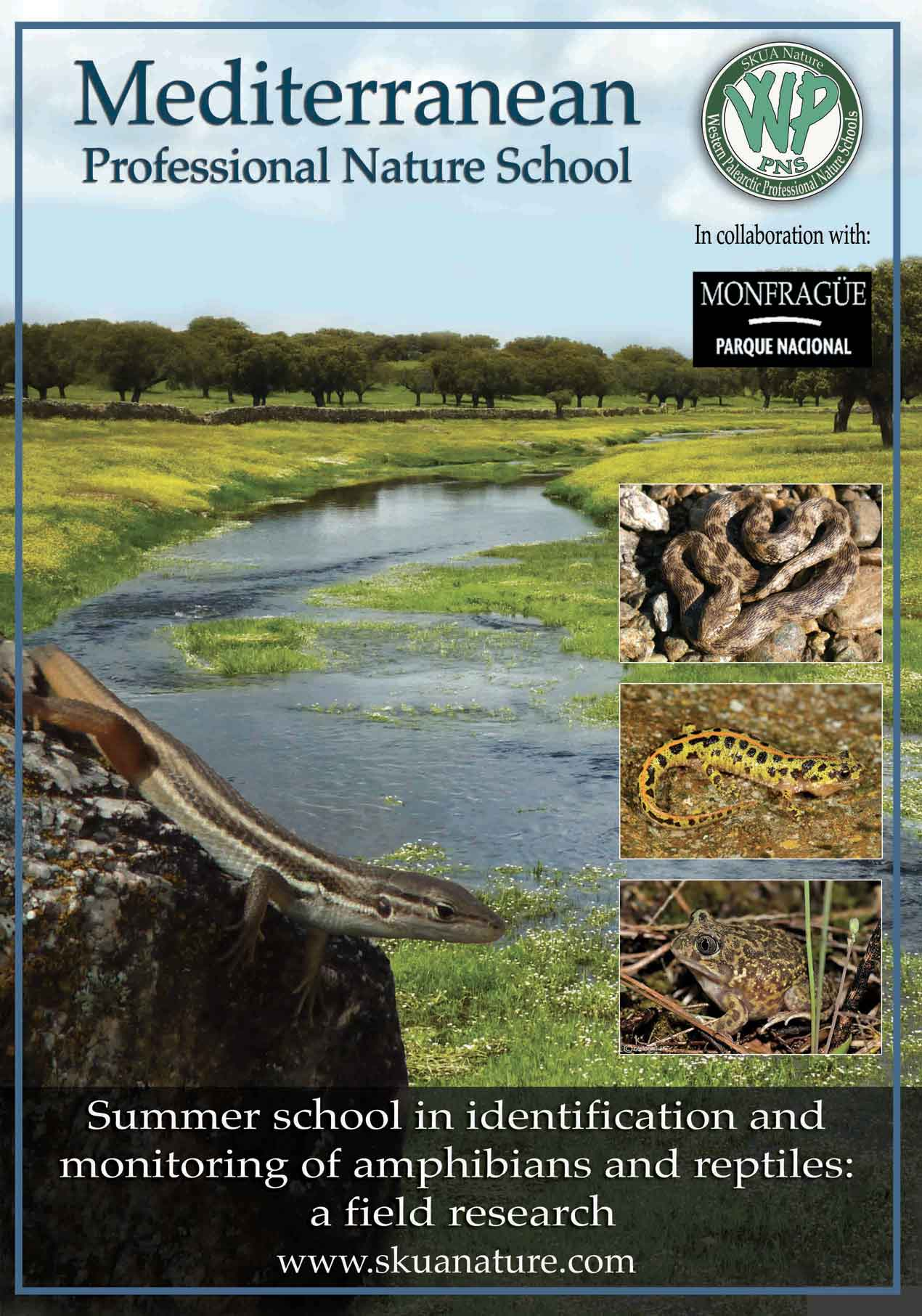 Anfibi e rettili dell''Extremadura