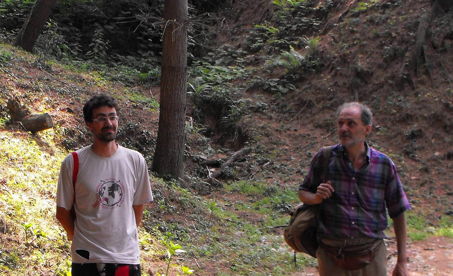 Limax dacampi del Monte Fenera (TO)