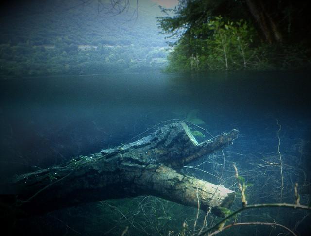 Immersioni in acqua dolce