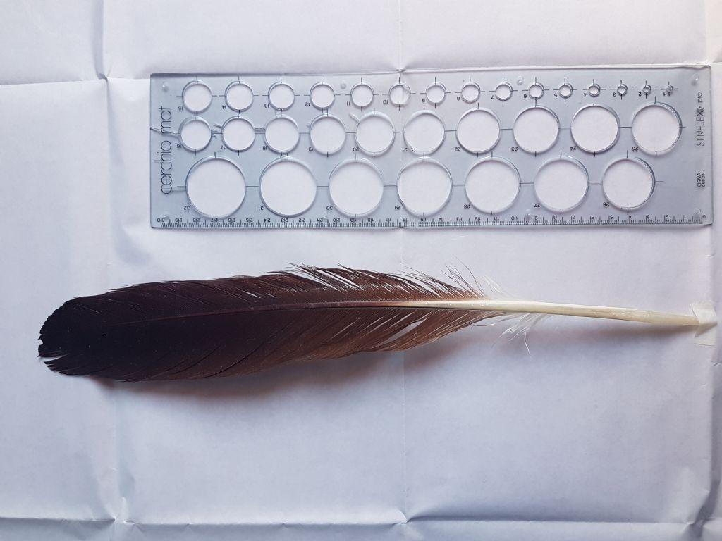 Identificazione penne