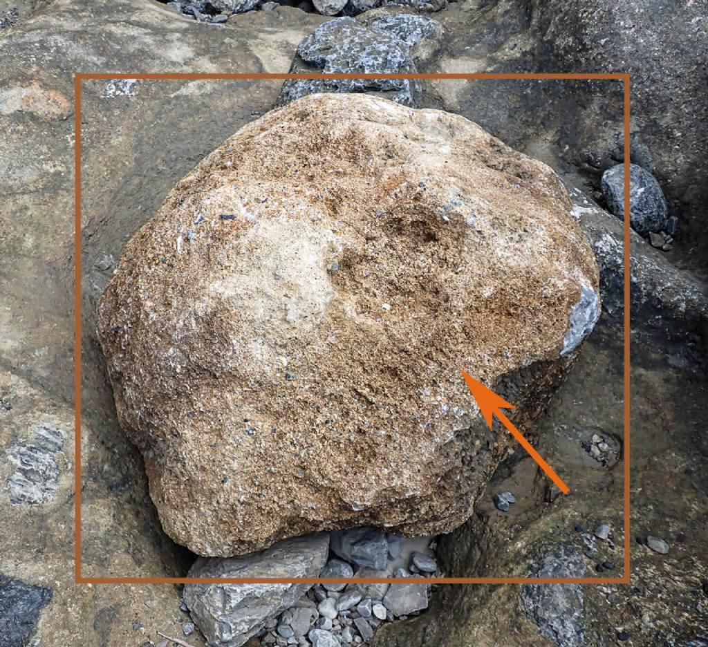 Masso ricoperto da strato di frammenti di conchiglie