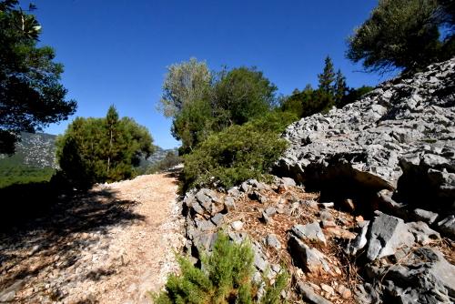 Trekking Ispuligidenie (Supramonte baunese)