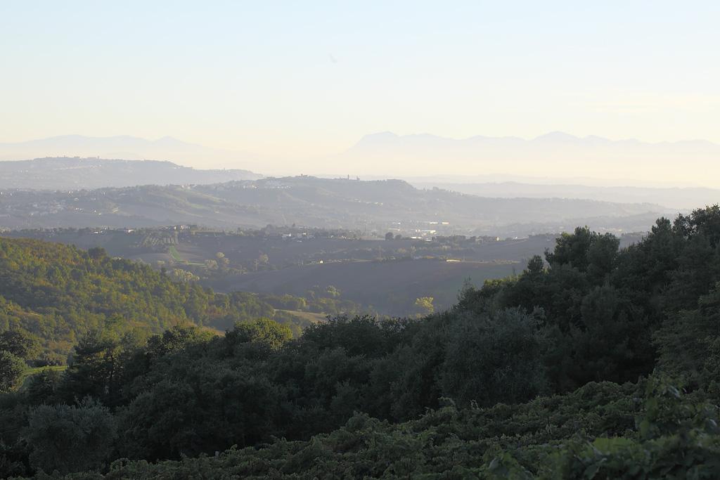 Panorami marchigiani