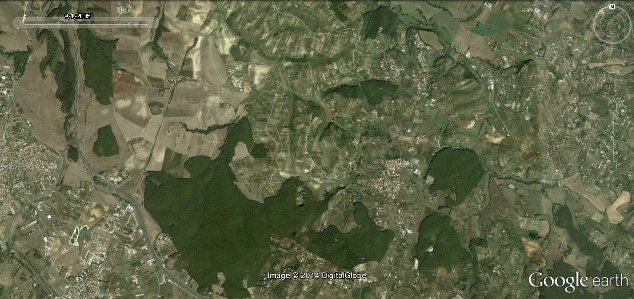 Si possono abbattere alberi in una riserva naturale???