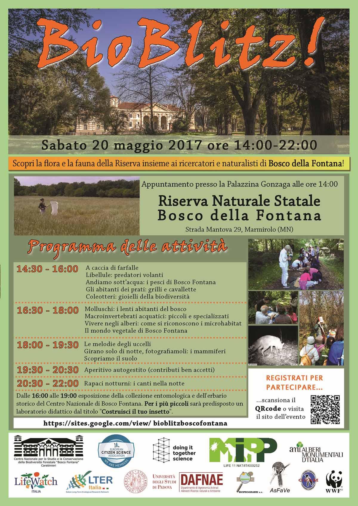 Bioblitz al Bosco Fontana (Mantova) il 20 Maggio 2017