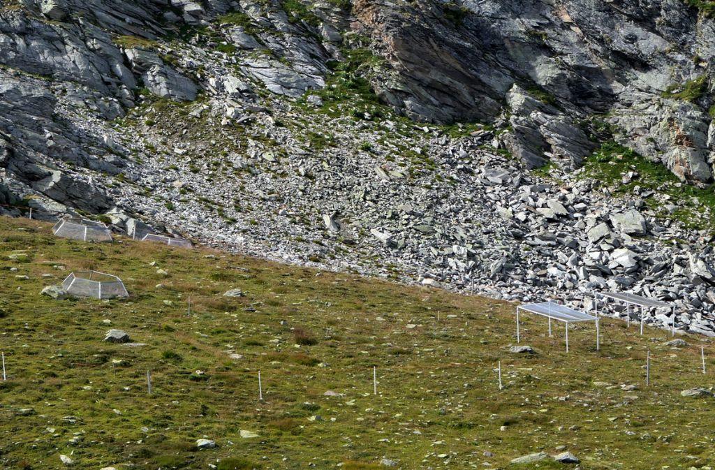Passo Stelvio