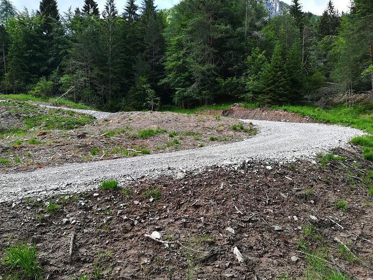Devastazione torbiera alpina in Carnia
