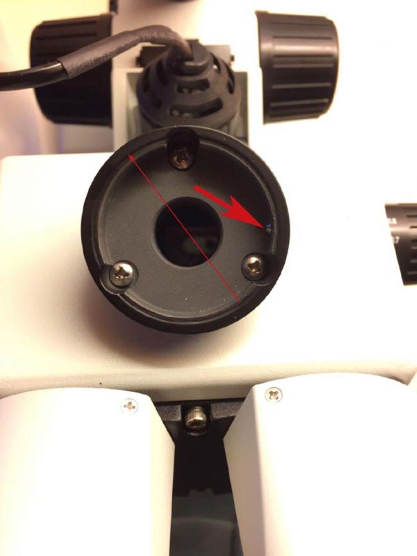 Reflex Nikon + stereoscopio trinoculare