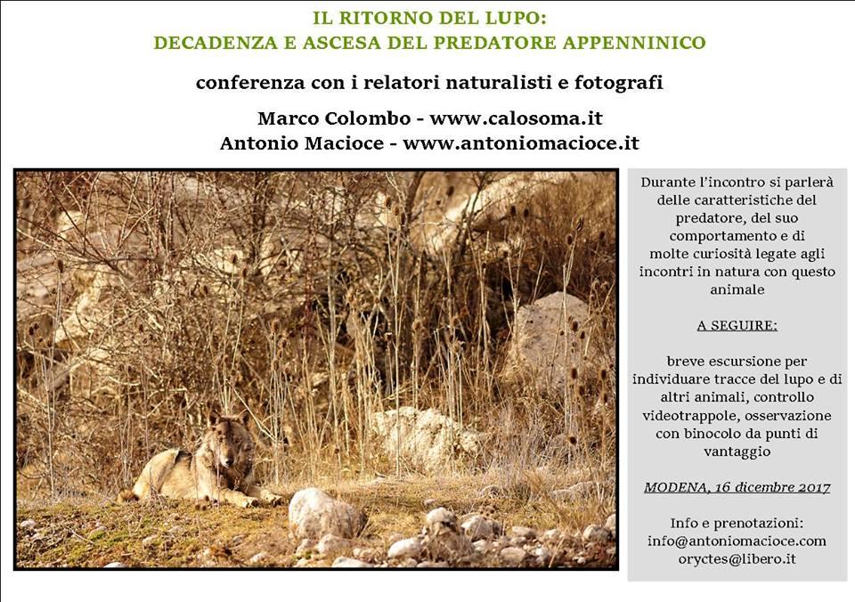 conferenza sul lupo a Modena con escursione