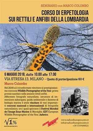 Corso di identificazione di rettili e anfibi della Lombardia