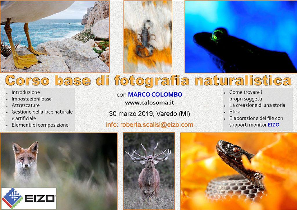 Corso base di fotografia naturalistica a Milano