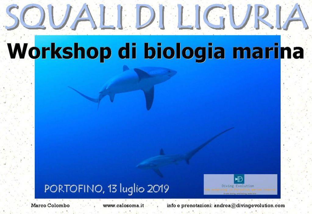 corso di biologia marina: squali
