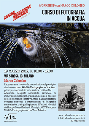 seminario teorico di fotografia in acqua