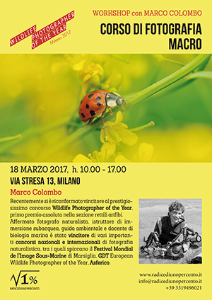 seminario teorico di fotografia macro e ravvicinata