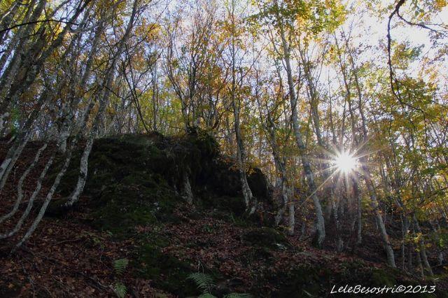 Monte Dego 1427m. Appennino Ligure