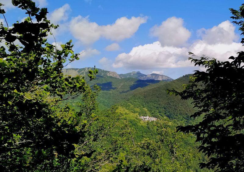 Monte Montarlone m 1500