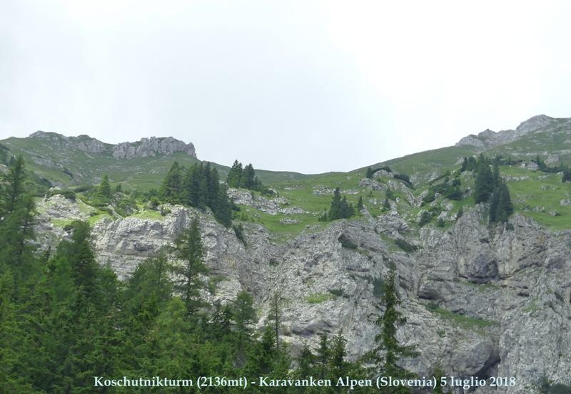 Nigritella in Slovenia: N.kossutensis, N.karawankarum, N.ravnikii  5 luglio 2018