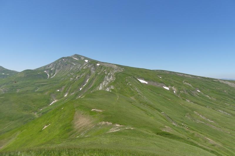 Nigritella widderi sui Monti della Laga (Rieti/L'Aquila) luglio 2019