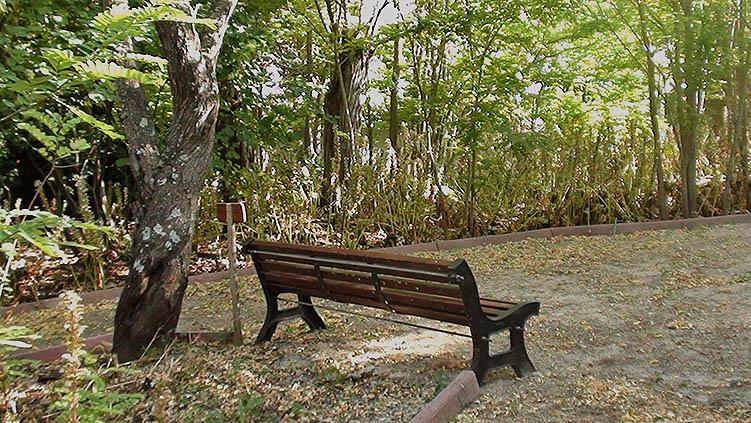 Il Parco di Villa Boldetti, Iglesias SU