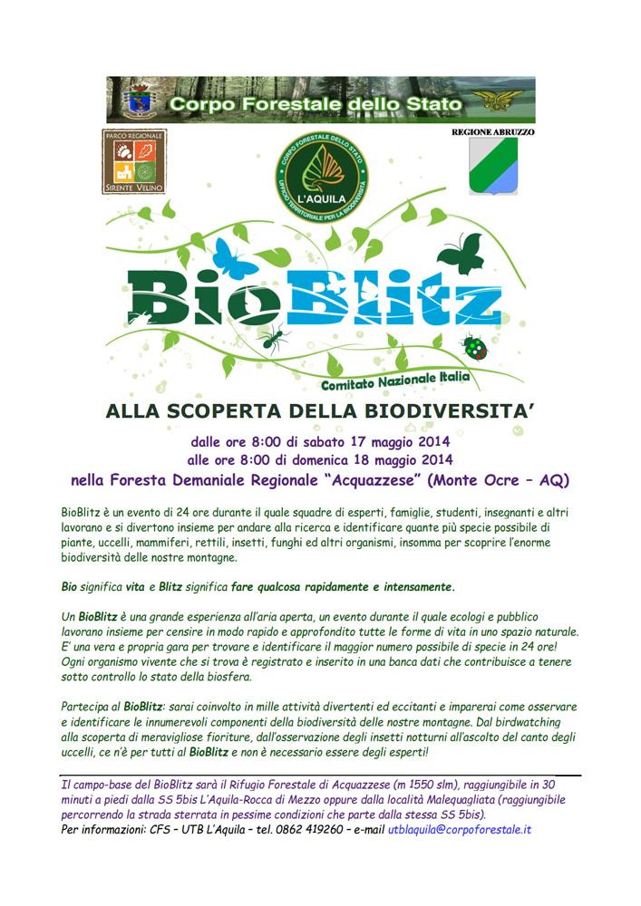 Cercasi esperti/entusiasti per BioBlitz, L''Aquila, 17 maggio