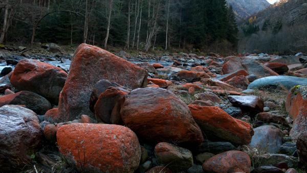 Colore rosso ruggine sui sassi del fiume sesia forum for Sassi di fiume