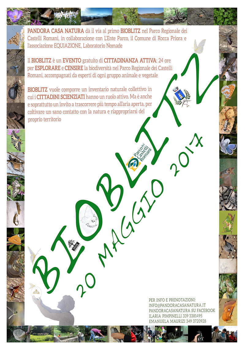 BioBlitz alla Doganella, nel Parco dei Castelli Romani, il 20 maggio 2017