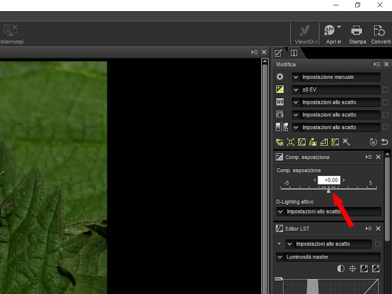 A che servono i files NEF: utilizzo di Capture NX-D